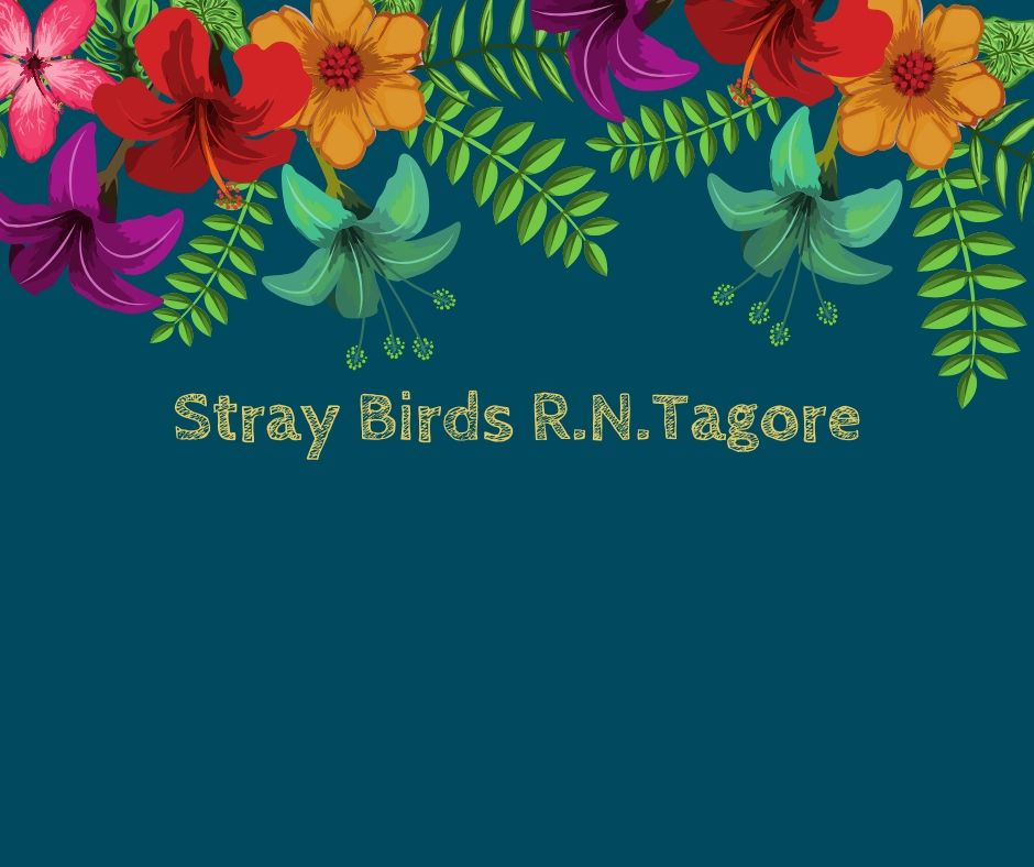 Hindi Translation of Stray Birds